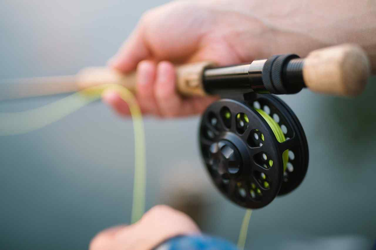 Best spinning reel 2021
