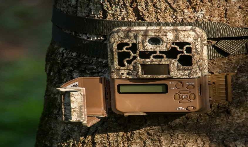 best-trail-camera-under-100