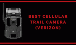 Best Cellular trail camera Verizon