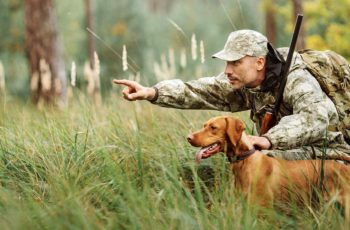 hunting safety course new york