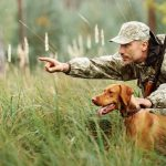 Best Hunting Safety Course New York (NY) in 2021