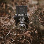 Tasco 8mp Trail Camera Reviews in 2021