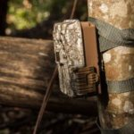 10 Best Trail Camera Reviews 2021 With Experts Buying Guide